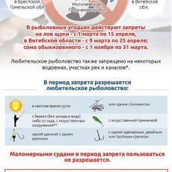 инфографика запрет по рыбалке