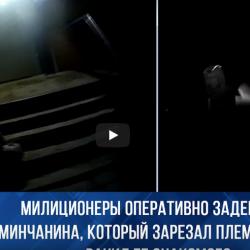 Screenshot_2020-11-26 Милиционеры оперативно задержали минчанина, который зарезал племянницу и ранил ее знакомого