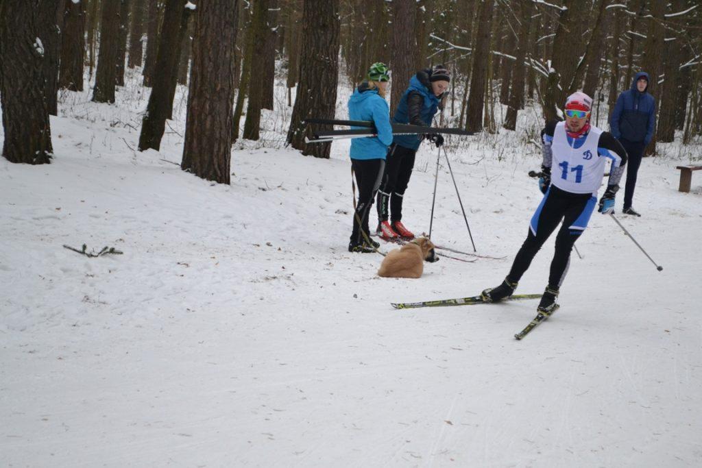 Лыжи 075