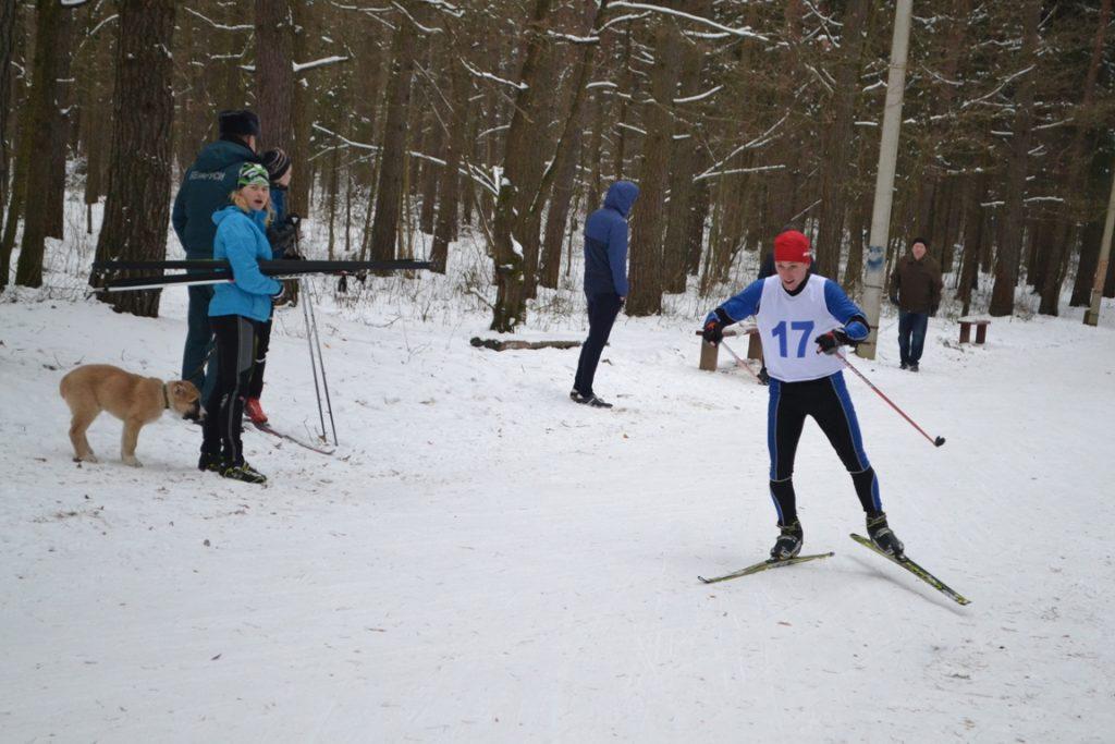 Лыжи 079