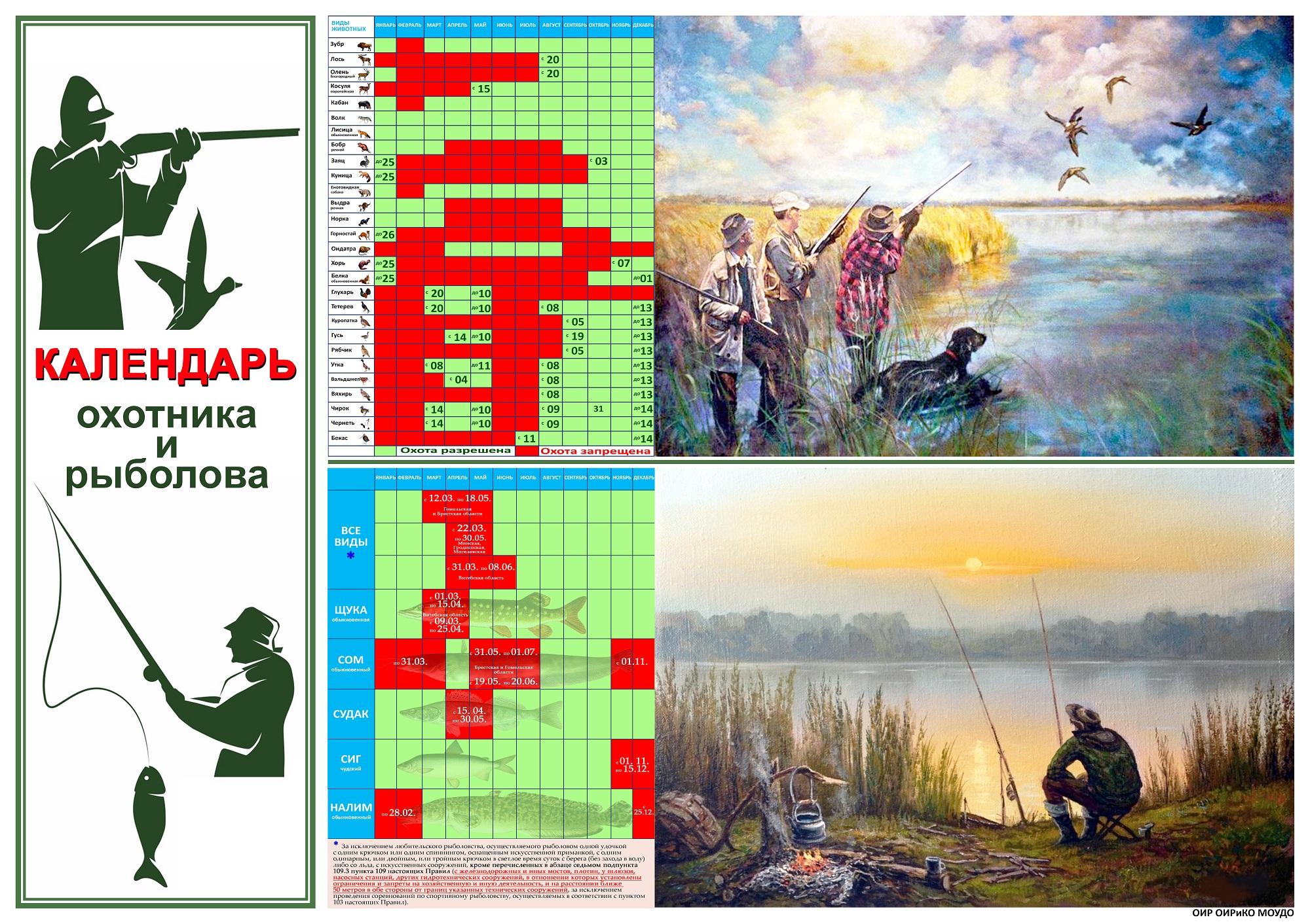 Стенгазета формата А1 - Календарь охотника и рыболова