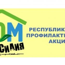 logo-800x433